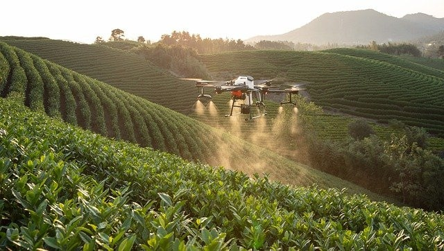 Drones For Spraying Crops